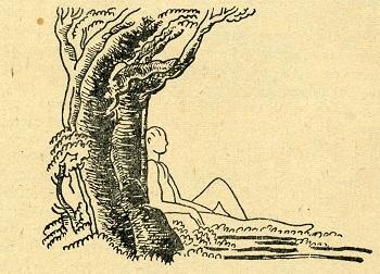 Avrupa'da Godefroy de Bouillon Çınarı diye anılan Büyükdere Çınarı'nın temsili resmi.